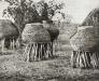 10-12-16_spichlerze_kwanyama-zdjecie_k-nowaka-1934